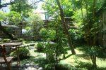 キレイに整えられている庭